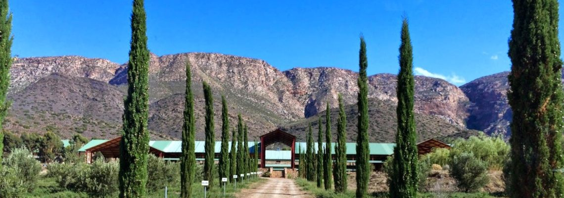 Wine Farm For Sale