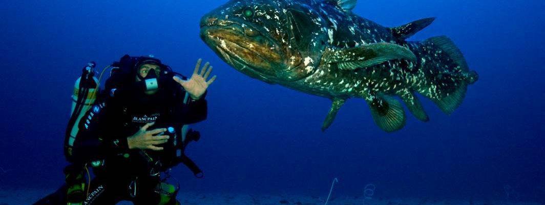 Blancpain Underwater