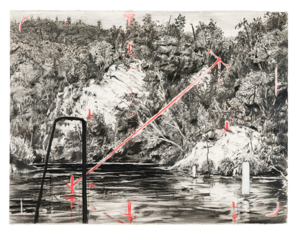 Deep Pool by William Kentridge