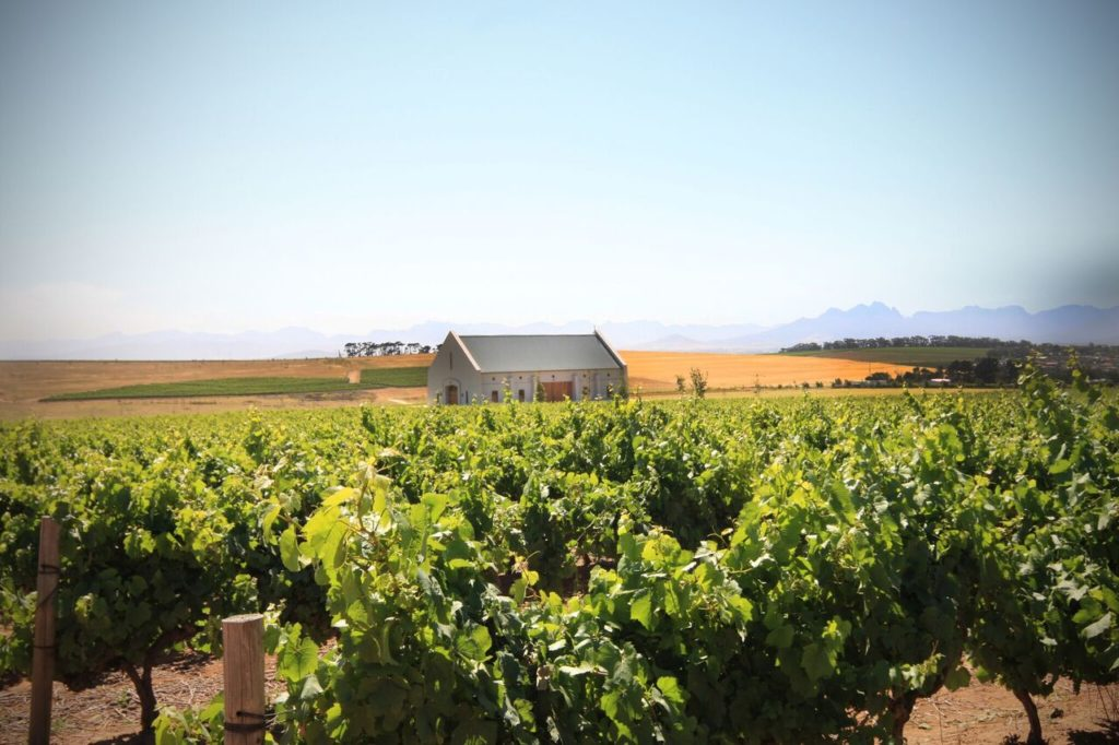 canto wine estate vineyard and tasting room