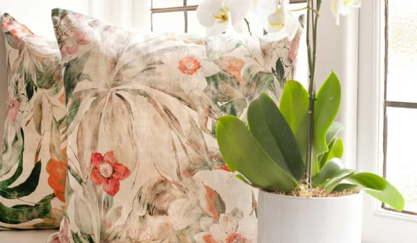 Chelseabelle Cushions