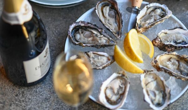 Harties Oyster Route Is Open!